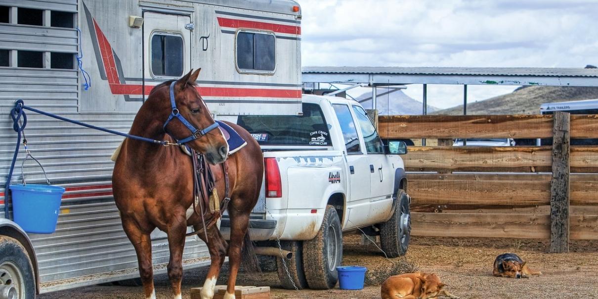 horse-trailer-1210x605